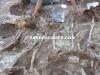 Exhumación de una fosa común (Málaga)